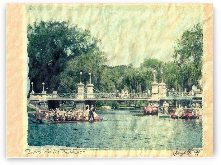 swans on the commons by Jon Knight Loruenser