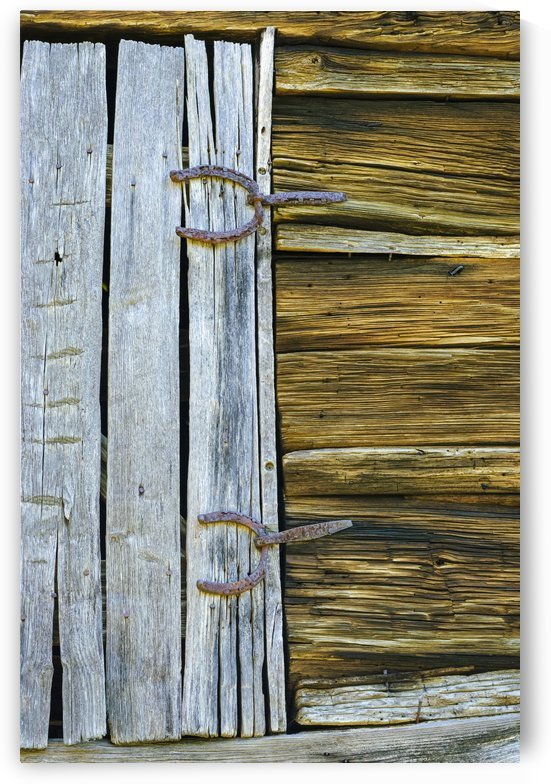 Horseshoe Hinges by Ian Barr