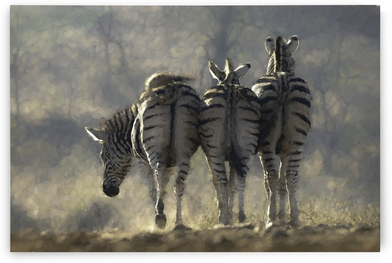 Striped Bums by Pam Mullins