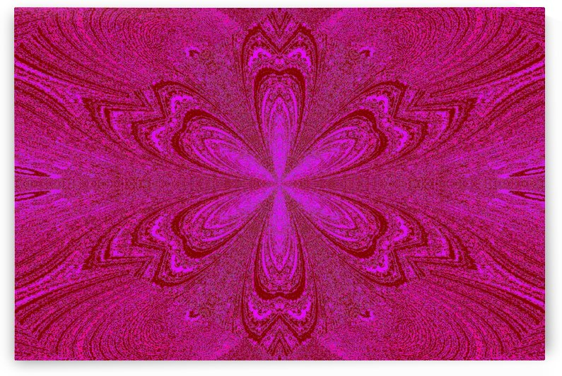 Pink Red Star Flower by Sherrie Larch