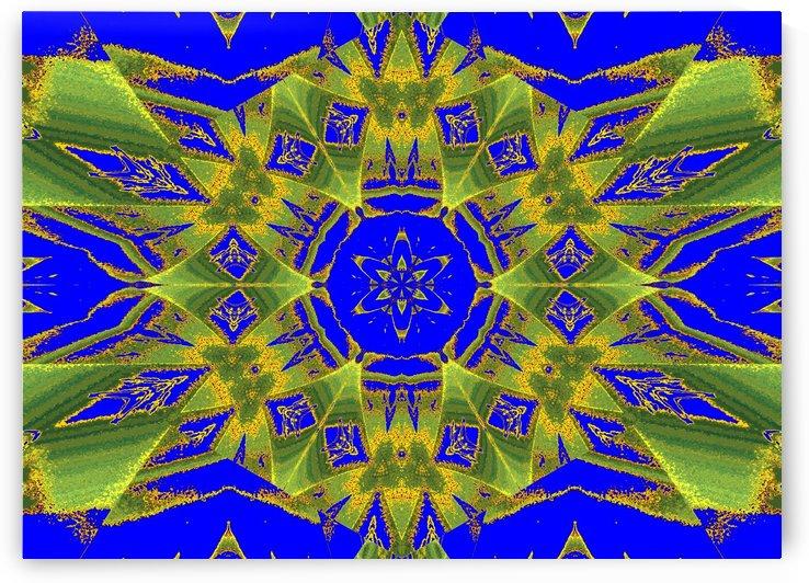 Synergy Jasmine 10 by Sherrie Larch