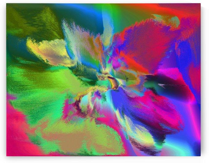 Flower Abstraction#1 by Rizal Ghazali
