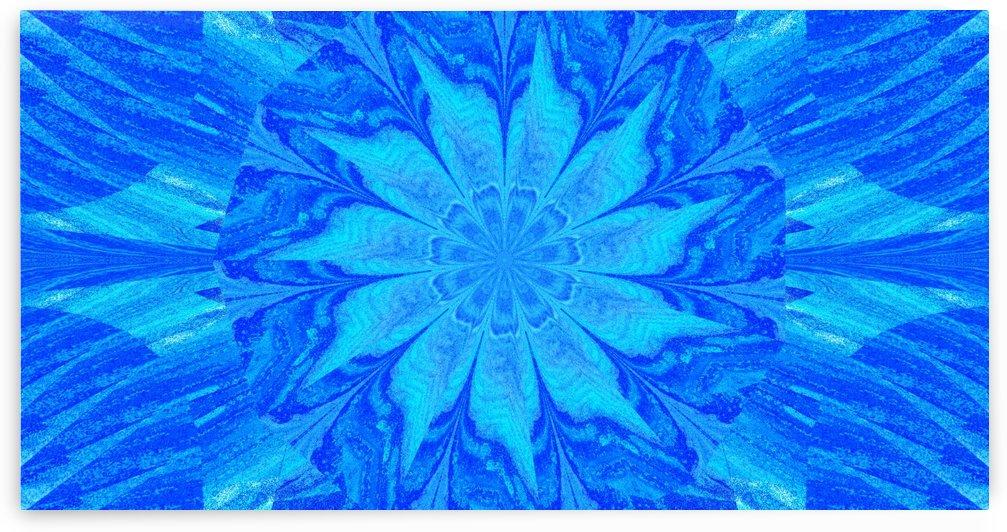 Blue Sky Wildflower by Sherrie Larch