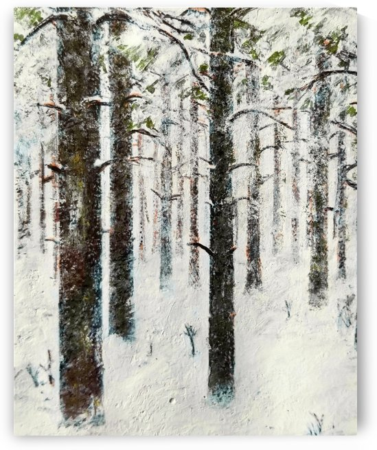 The Woods Fill Up With Snow by djjf