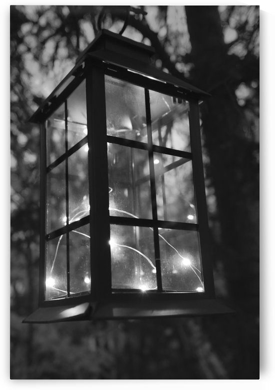 Eclaire ma lanterne by Annie St-Pierre Photographie Artiste Photographe
