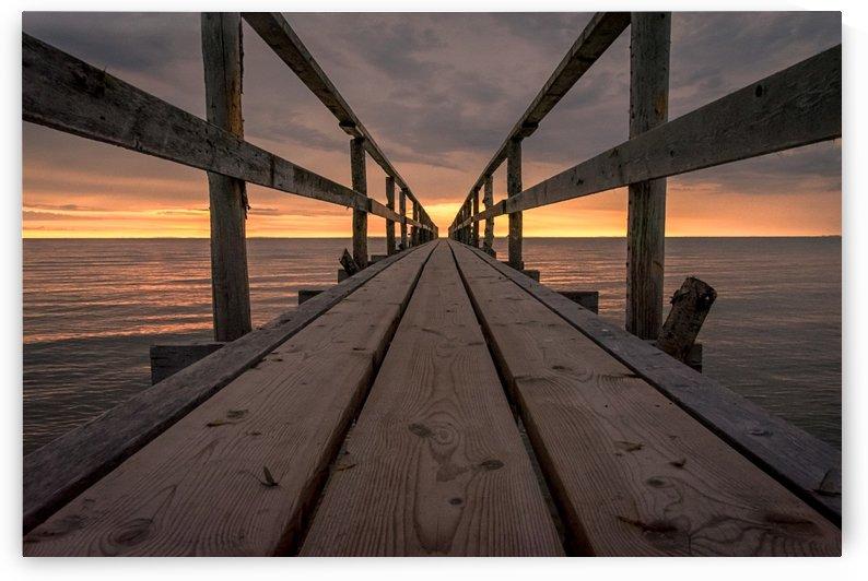 Morning at the Lake by David Brophy