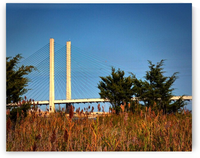 Indian River Bridge Stanchions Standing Tall by Bill Swartwout Photography