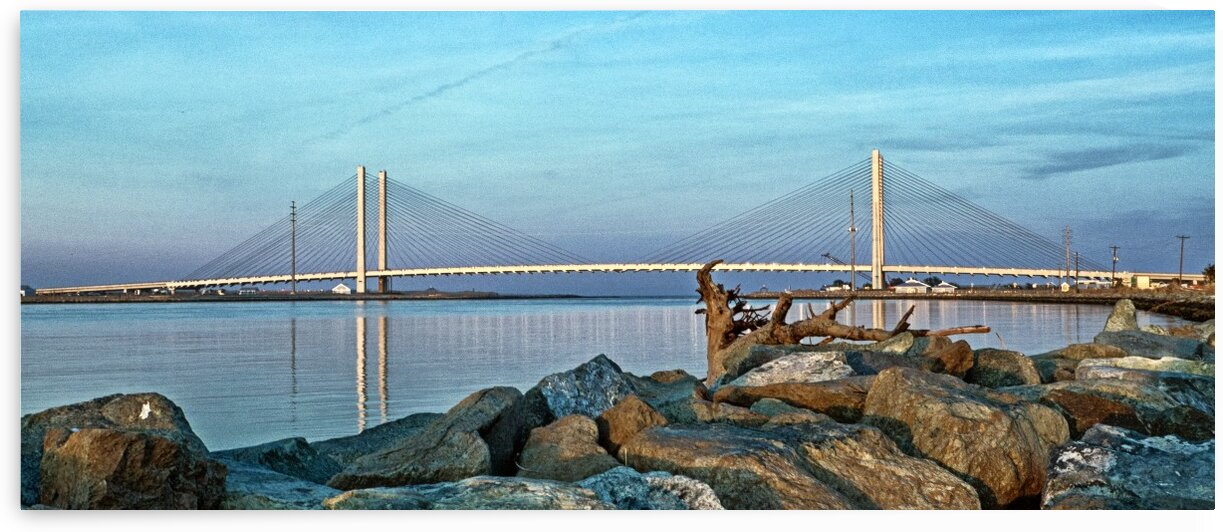 Indian River Bridge Driftwood Panorama by Bill Swartwout Photography