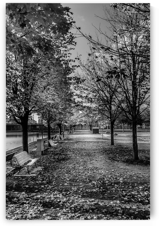 Old Port Of Montreal Autumn B&W by Telly Goumas