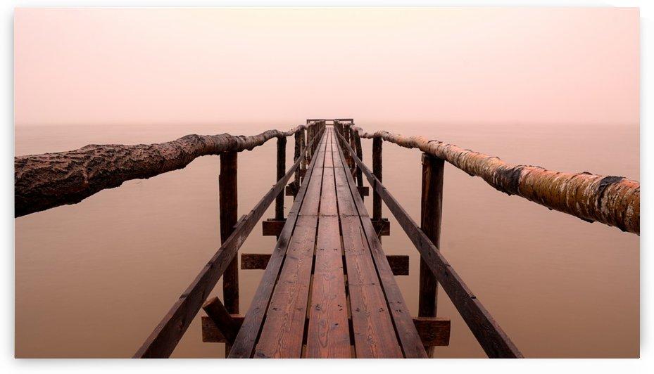 Enter The Lake by David Brophy