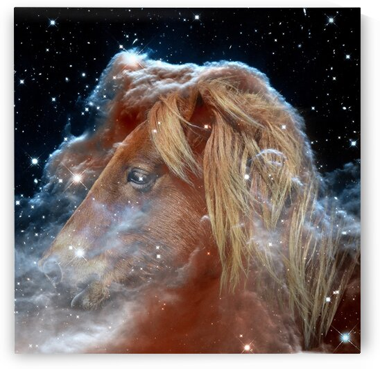Horsehead Nebula with Horse Head in Space by Bill Swartwout Photography
