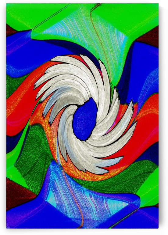 A Shasta Daisy Bloom Abstract by ImagesAsArt By John Louis Benzin