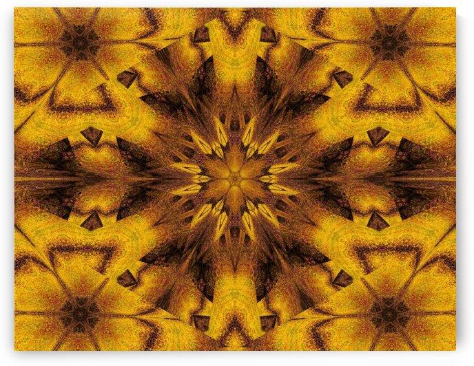 Spiritual Sunshine  31 by Sherrie Larch