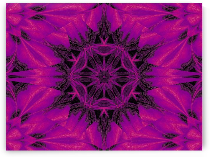 Purple Desert Song 31 by Sherrie Larch