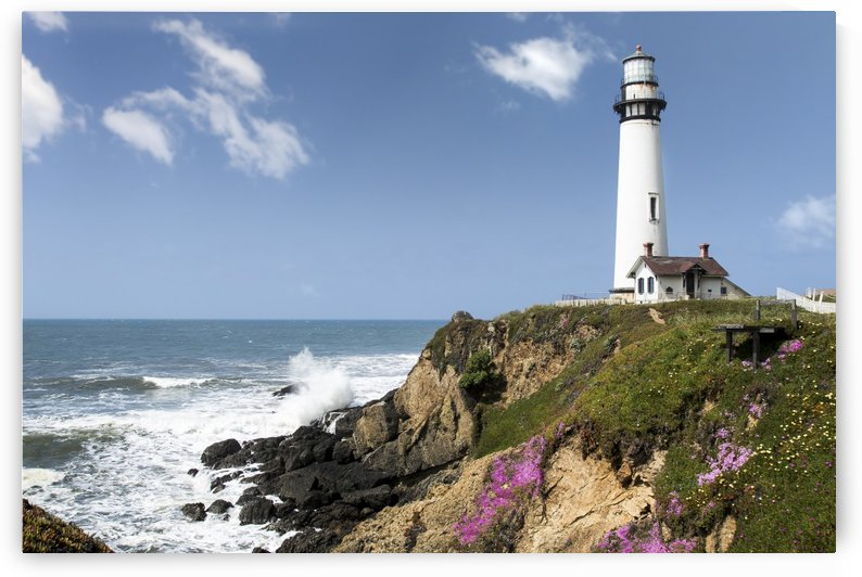 Pigeon Point Lighthouse by Gary Geddes