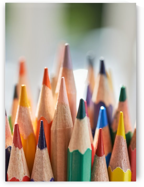 Close-up view of bunch of the colored pencil by Krit of Studio OMG