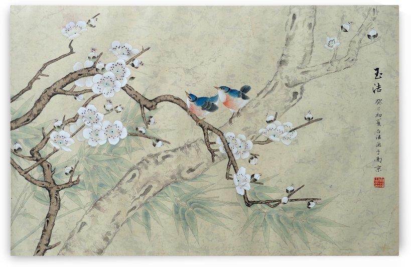 Plum Blossom in Spring by Birgit Moldenhauer