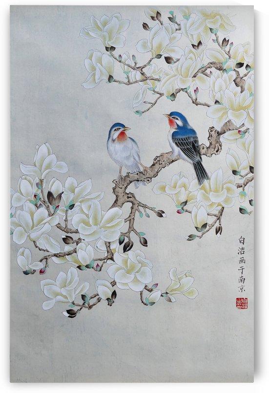 White Magnolia by Birgit Moldenhauer