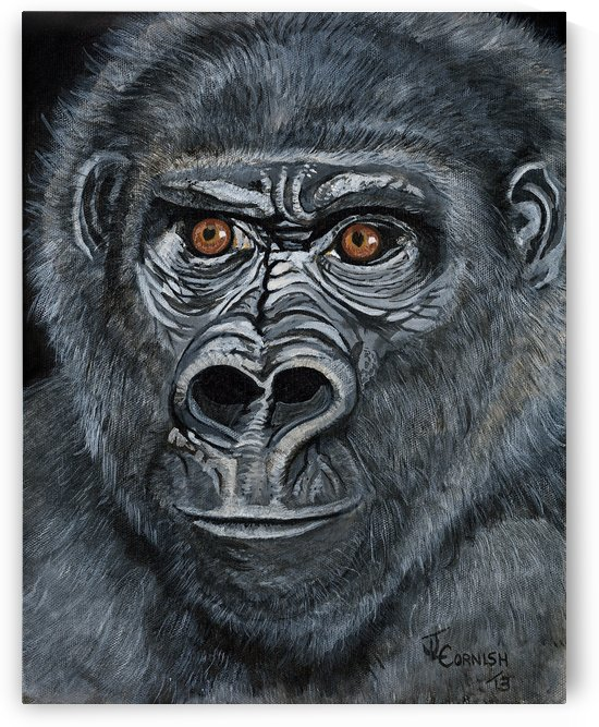 Silverback by Janis Cornish