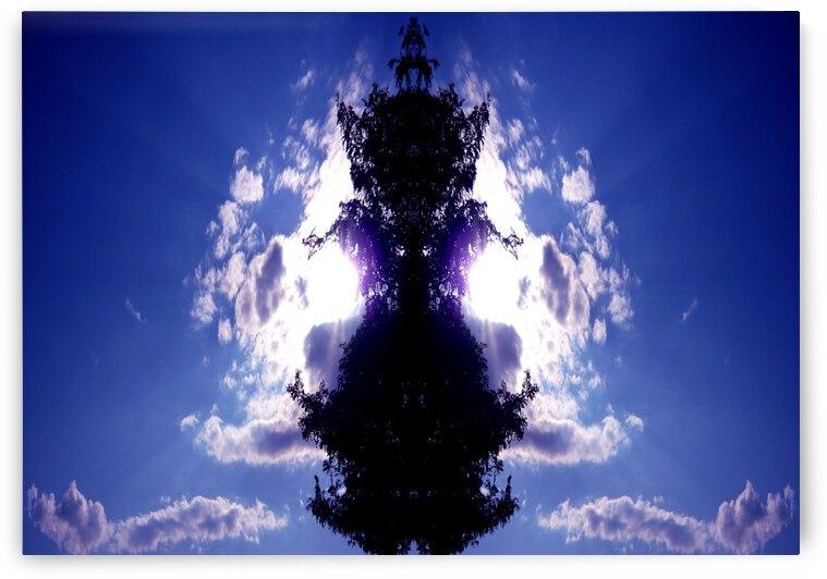 blue 2 by Carlos Manzcera