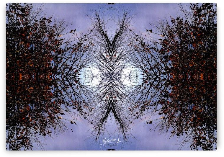 nube 57 by Carlos Manzcera