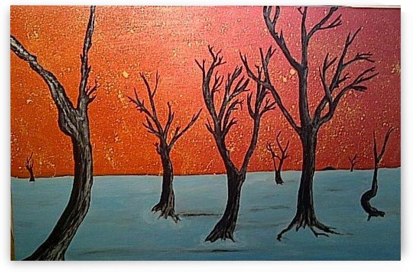 Namibia  by Ingrid Mueller