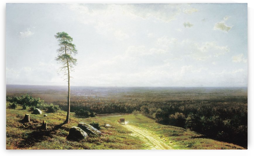 Forrest view at midday by Mikhail Clodt
