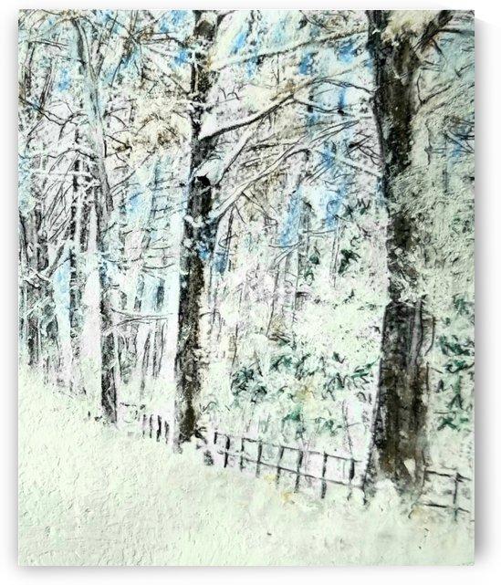 Brief December Day by djjf