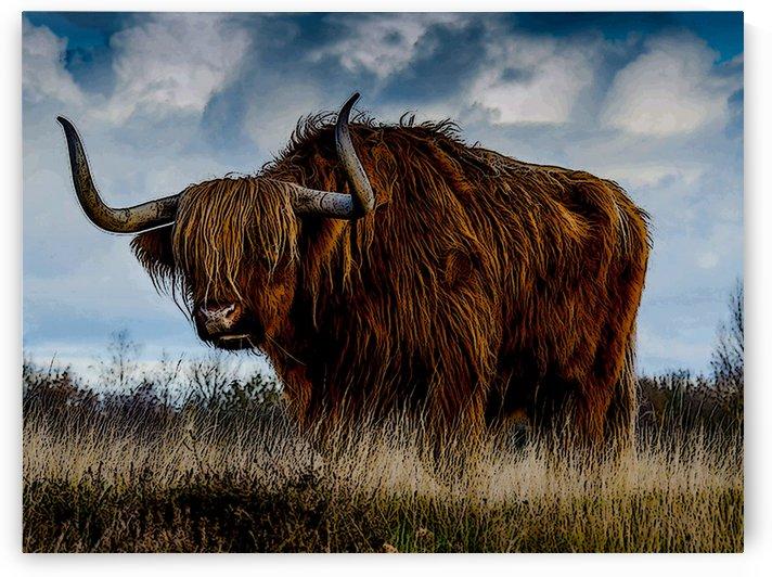 The Beast by W Scott