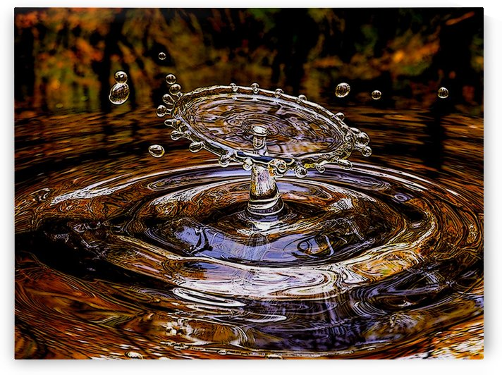 Splash by W Scott