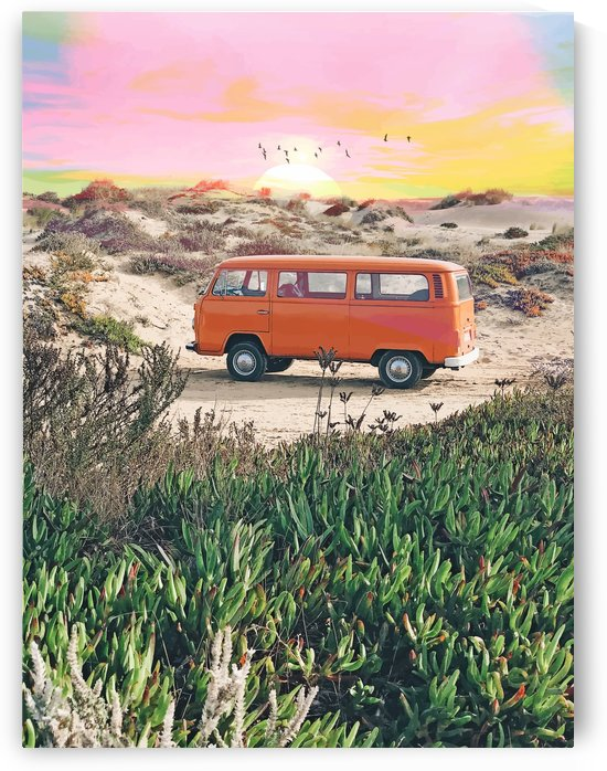 Summer Adventure by 83 Oranges