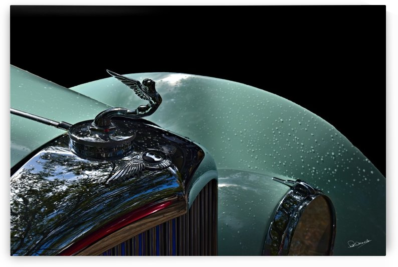 Bentley Hood Ornament by Shadow and Form