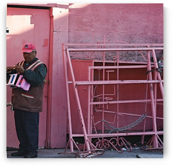 Tijuana Pink by H.Hart Photography