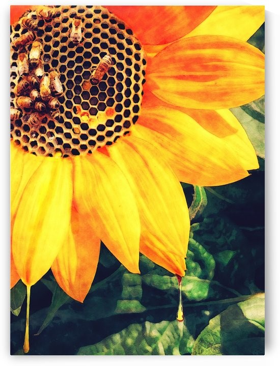 Like Bees To Honey by Erin Mac