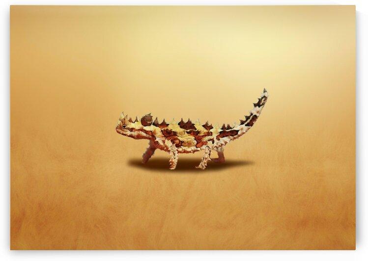 Lizard. Thorny dragon. Moloch. by Radiy Bohem