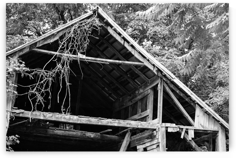 Dilapidated wooden structure by Michael Geyer