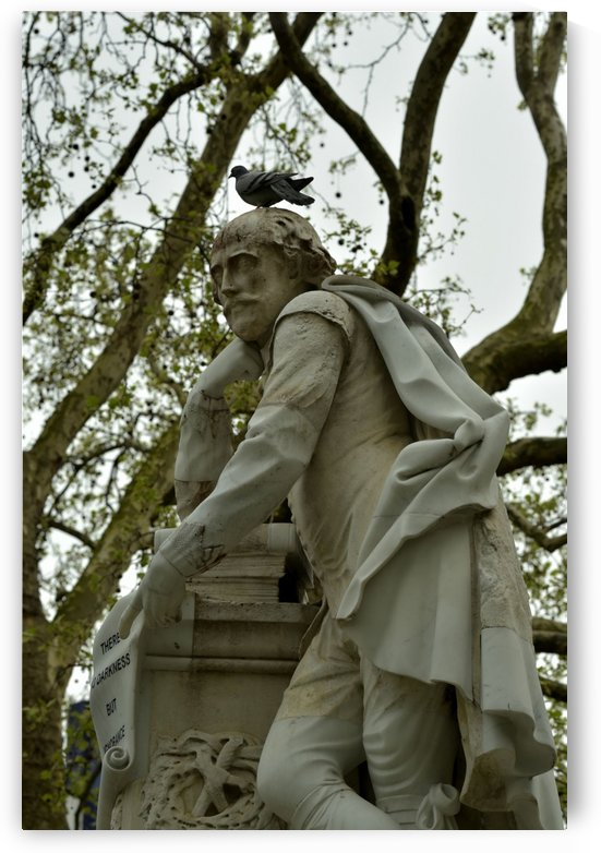 Shakespeare with Pigeon by H.Hart Photography
