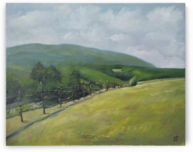 Pasture by Joseph Coban