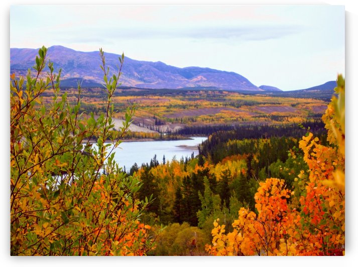 Colours of the Yukon by Stuart Spofford