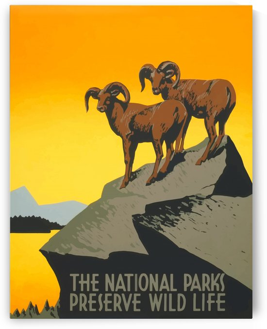 USA National Parks America USAEdited (1) by Culturio