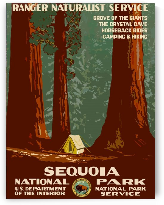 USA Sequoia National ParkEdited by Culturio