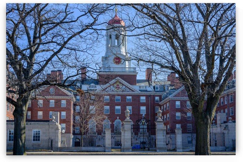 Harvard University by vincenzo