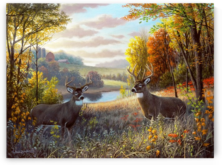 Oct Bliss CANVAS by CRB