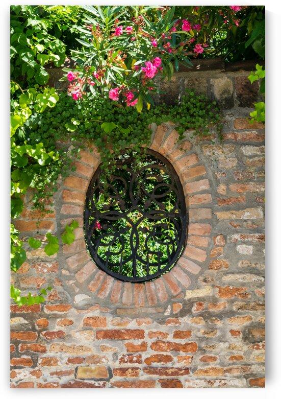 Splendid Venetian - Ubercharming Garden Window With Plants by GeorgiaM