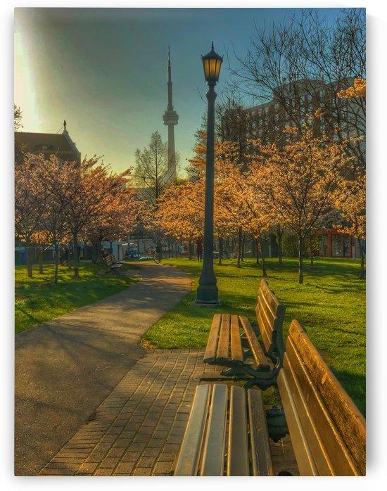 Trinity Park  by UrbanStreetBeats
