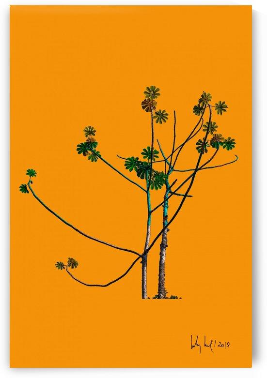 tree VI by Carlos Wood