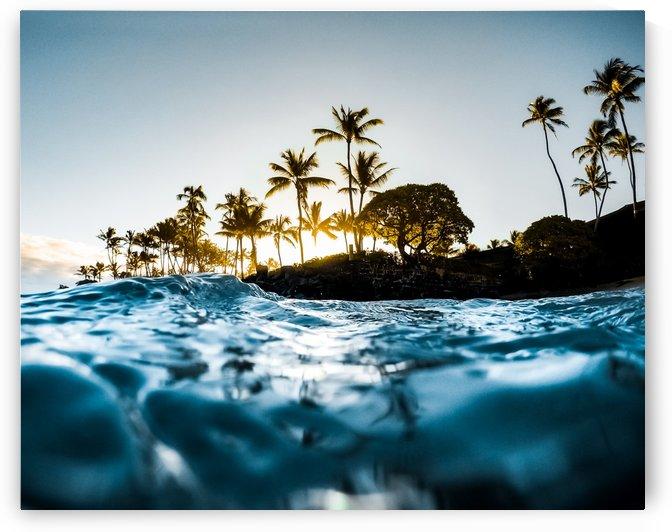 Warm Waters by Lucas Moore