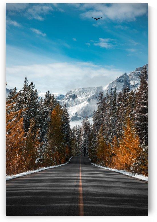 Winter Road by Lucas Moore