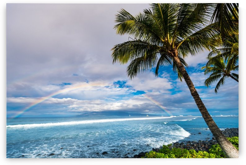 Hawaiian Landscape by Lucas Moore