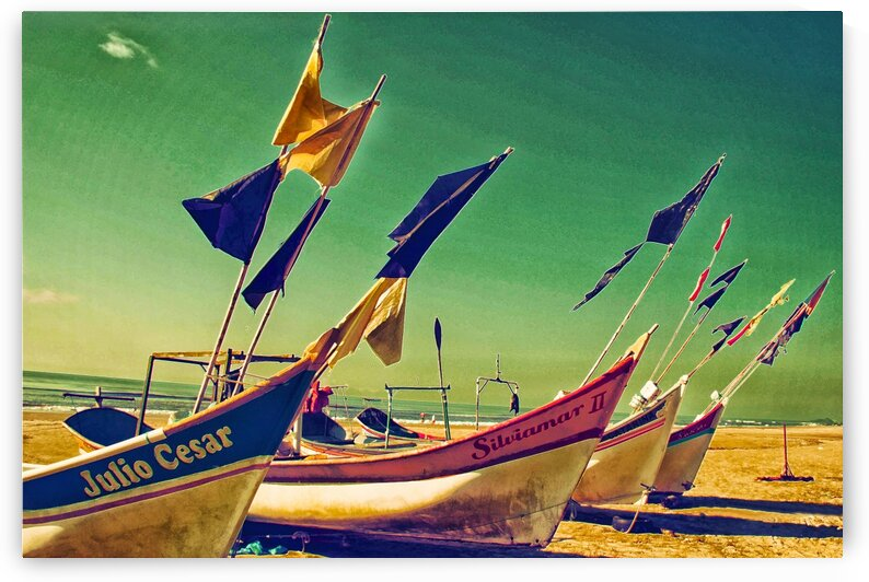 Boat - V by Carlos Wood